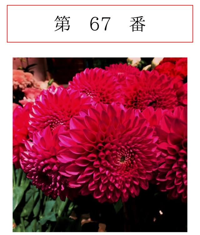 1fd4b1182740 8月3日の新月は、ティーンエイジャーの気分で! | エディター 青木良文の 今日も大吉!! | mi-mollet(ミモレ) |  明日の私は、もっと楽しい